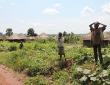 Kinder in einem Dorf im Nationalpark